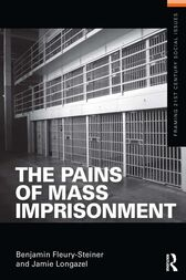 The Pains of Mass Imprisonment by Benjamin Fleury-Steiner