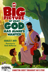 The Big Picture of What God Always Wanted by Charles F. Boyd