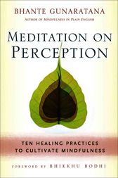Meditation on Perception by Henepola Gunaratana