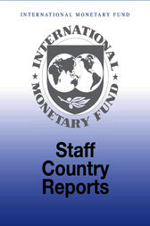 Republic of Belarus: 2007 Article IV Consultation-Staff Report; Staff Supplement; Public Information Notice on the Executive Board Discussion; and Statement by the Executive Director for the Republic of Belarus by International Monetary Fund