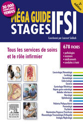 Méga Guide STAGES IFSI by Jérôme Alexandre