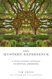 The Mystery Experience by Tim Freke