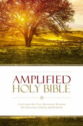 Amplified Holy Bible, eBook by Zondervan