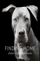 Finding Home by Traer Scott