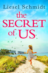 The Secret Of Us by Liesel Schmidt