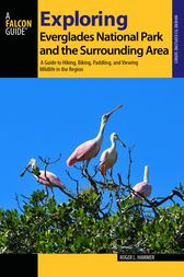 Exploring Everglades National Park and the Surrounding Area by Roger L. Hammer