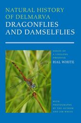 Natural History of Delmarva Dragonflies and Damselflies by Harold B. White