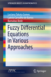 Fuzzy Differential Equations in Various Approaches by Luciana Takata Gomes