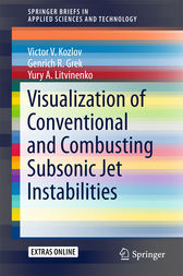 Visualization of Conventional and Combusting Subsonic Jet Instabilities by Victor V. Kozlov