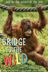 Bridge to the Wild by Caitlin O'Connell