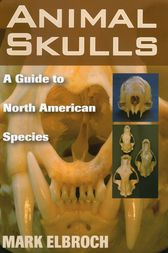 Animal Skulls by Mark Elbroch