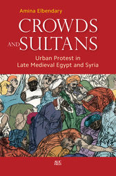 Crowds and Sultans by Amina Elbendary