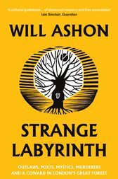 Strange Labyrinth by Will Ashon