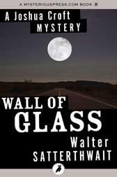 Wall of Glass by Walter Satterthwait