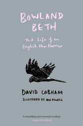 Bowland Beth: The Life of an English Hen Harrier by David Cobham